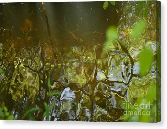 Minnow Creek Canvas Print by Russell Christie