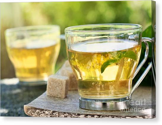 Sweet Tea Canvas Print - Mint Tea by Mythja  Photography