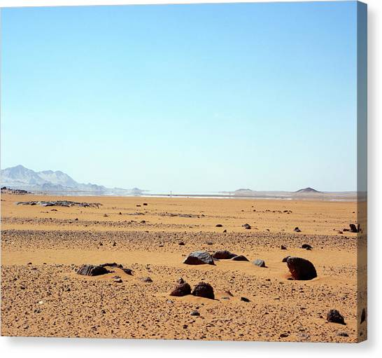 Mirages Canvas Print - Mirage by David Parker/science Photo Library