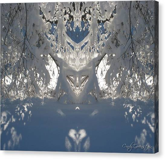 Mirror Of Snow  Canvas Print