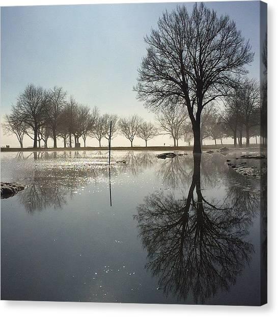 Symmetrical Canvas Print - Mirrors by Dave Thewlis