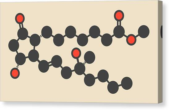 Abortion Canvas Print - Misoprostol Molecule by Molekuul