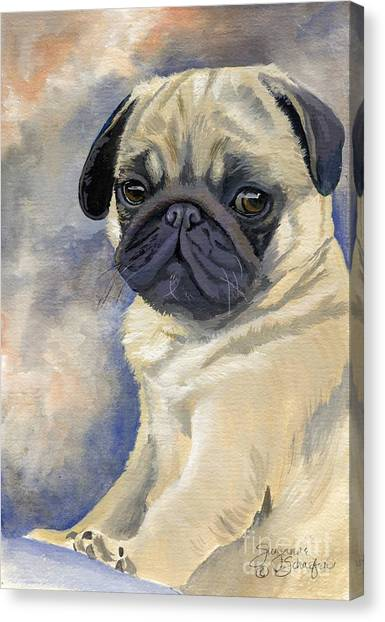 Miss Puggles Canvas Print