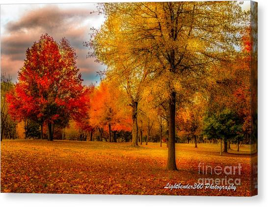 Missing Fall Canvas Print