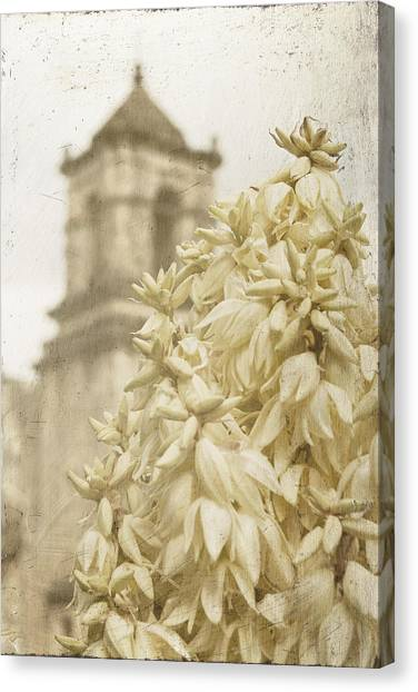 Mission San Jose And Blooming Yucca Canvas Print