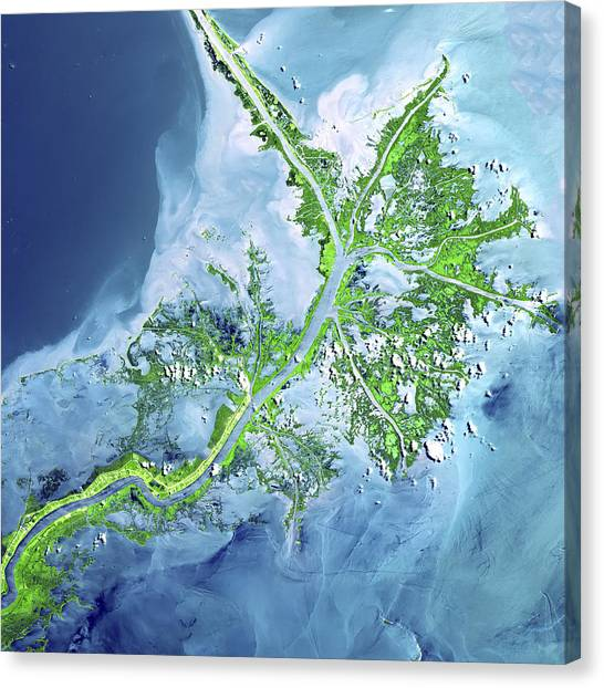 Satellite Canvas Print - Mississippi River Delta by Adam Romanowicz