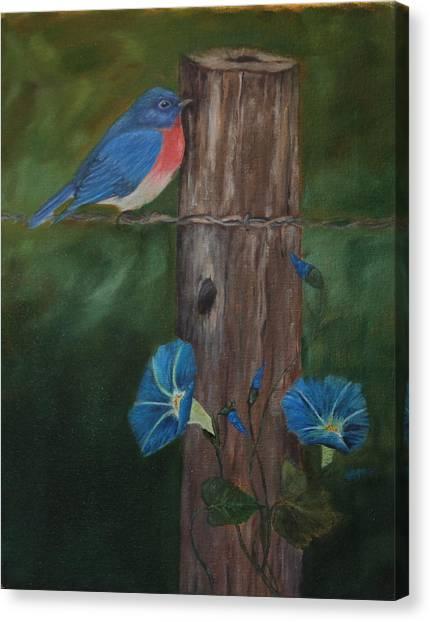 Missouri Blue Bird II Canvas Print