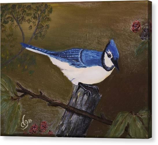 Missouri Blue Jay Canvas Print