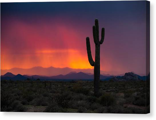Mist At Sunset Canvas Print