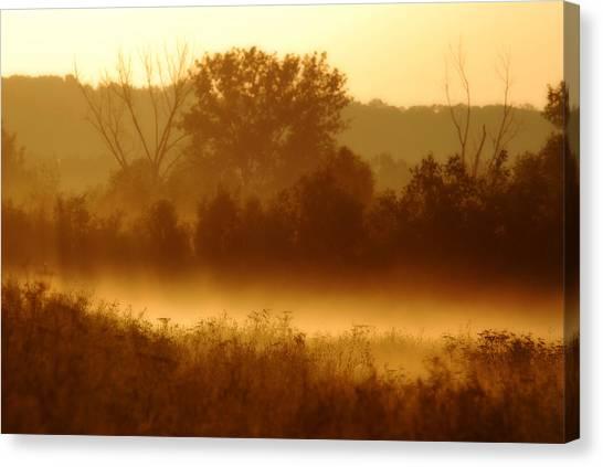 Mist Burning Off The Field Canvas Print