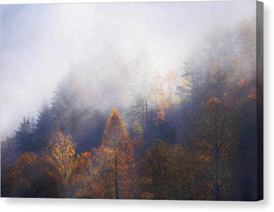 Mist In Mountains Canvas Print by Dorothy Walker