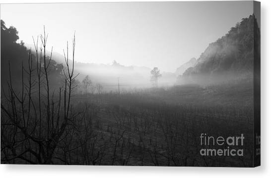 Foggy Forests Canvas Print - Mist In The Valley by Setsiri Silapasuwanchai