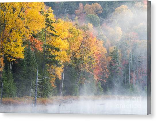 Mist Over Fly Pond Canvas Print