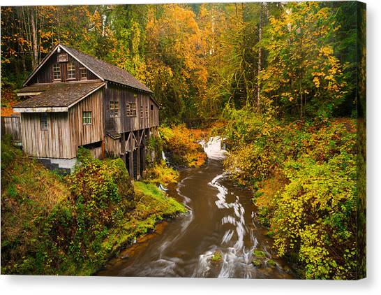 Misty Creek Canvas Print