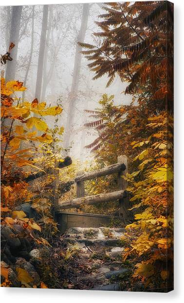 Foggy Forests Canvas Print - Misty Footbridge by Scott Norris