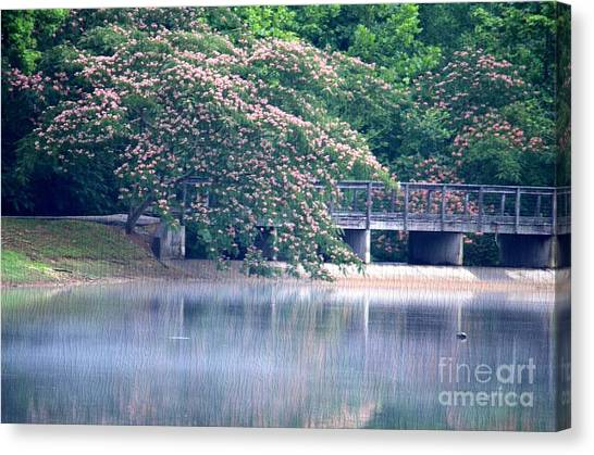 Misty Mimosa Reflections Canvas Print