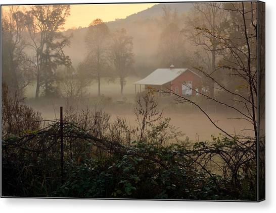 Misty Morn And Horse Canvas Print