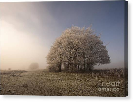 United Way Canvas Print - Misty Morn by Anne Gilbert
