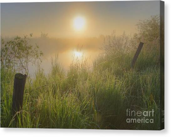 Prairie Sunrises Canvas Print - Misty Morning At The Local Pond by Dan Jurak