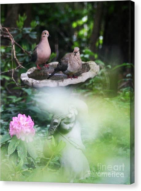 Misty Morning Doves Canvas Print by Jinx Farmer