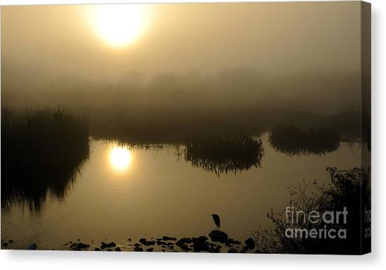 Misty Morning In The Marsh Canvas Print