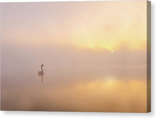 Misty Morning Canvas Print by Katarzyna Gritzmann