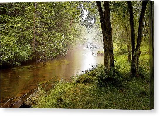 Misty Morning On A Mountain Stream Digital Art Canvas Print
