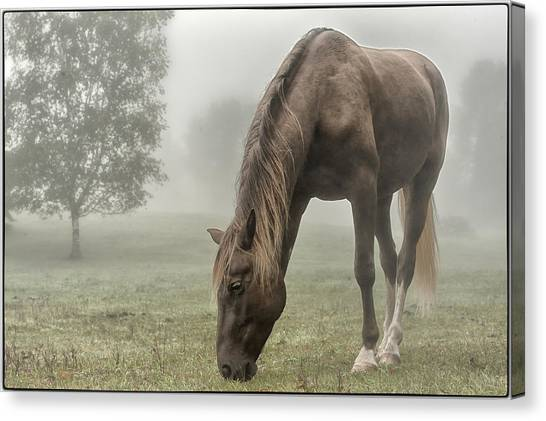Misty Morning Canvas Print by Peter Lindsay