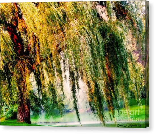 Misty Weeping Willow Tree Dreams Canvas Print