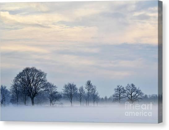 Misty Winter Day Canvas Print