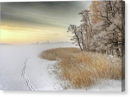 Winter Canvas Print - Misty Winter Morning by Keijo Savolainen