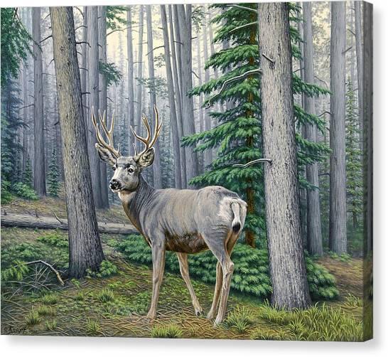 Mule Deer Canvas Print - Misty Woods-buck by Paul Krapf
