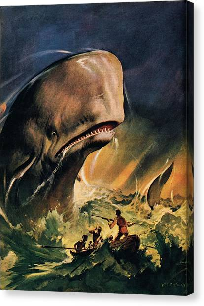 Blue Whales Canvas Print - Moby Dick by James Edwin McConnell