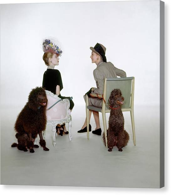 Models Sitting With Poodles Canvas Print by John Rawlings