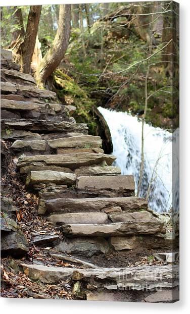Mohawk Falls Steps Canvas Print