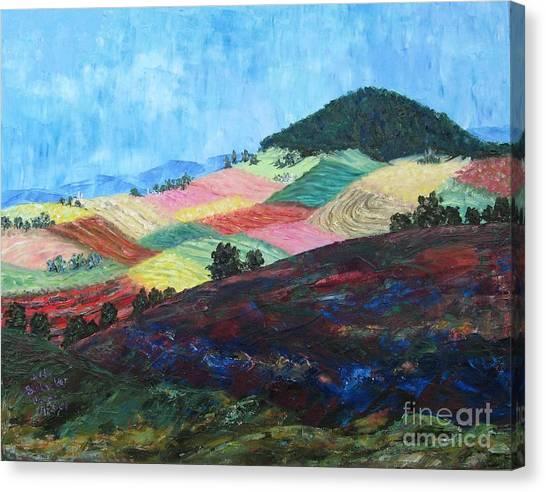 Mole Hill Patchwork - Sold Canvas Print