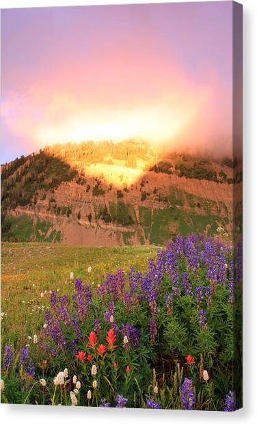 Moment Of Illumination Canvas Print