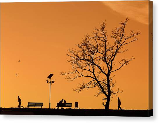 Street Lamp Canvas Print - Moments by Dan Mirica
