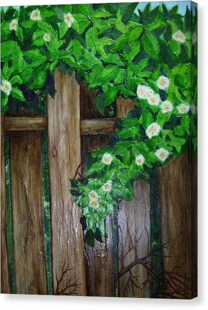 Mom's Backyard Cedar Fence Canvas Print by Jan Wendt