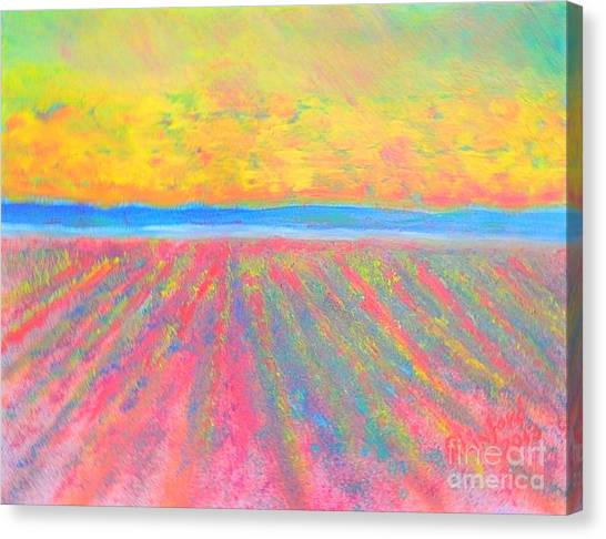 Utah State University Canvas Print - Mona Utah Lavender Fields 1 by Richard W Linford