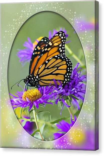 Monarch On Astor Canvas Print