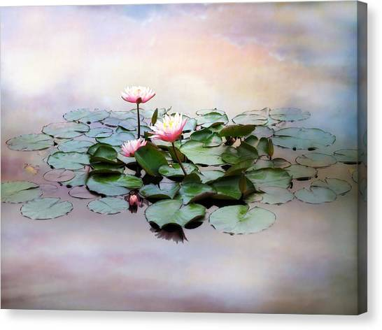 Monet Lilies  Canvas Print