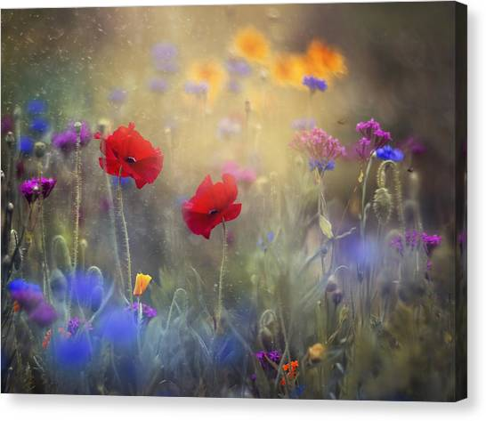 Poppy Canvas Print - Monet's Garden I by Magda  Bognar