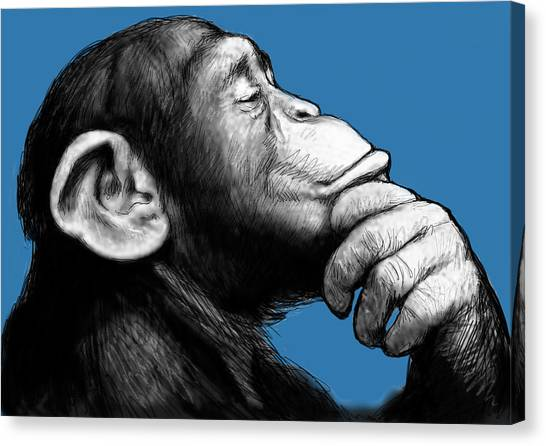 Monkeys Canvas Print - Monkey Pop Art Drawing Sketch by Kim Wang