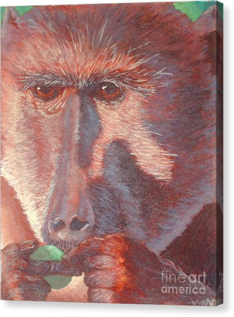 Monkey's Lunch Canvas Print