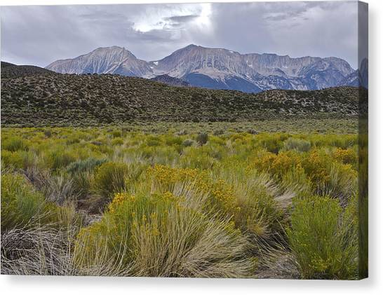 Mono Basin Lee Vining 1 Canvas Print