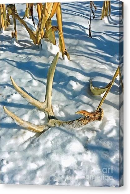 Monster Buck Canvas Print - Monster Buck Still Running by Helene Guertin