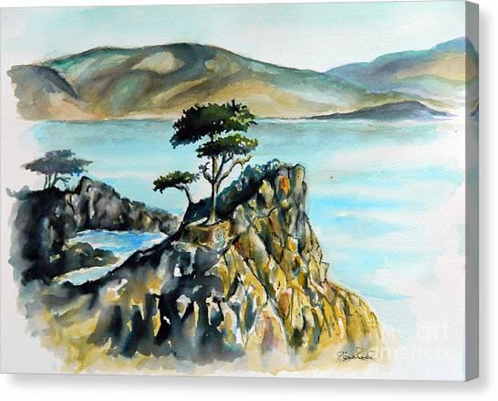 Monterey Pines Canvas Print