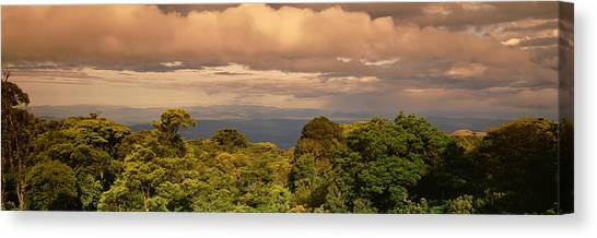 Monteverde Canvas Print - Monteverde Puntarenas Province Costa by Panoramic Images