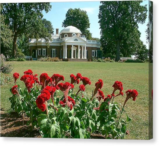 Monticello Cockscomb In Bloom Canvas Print